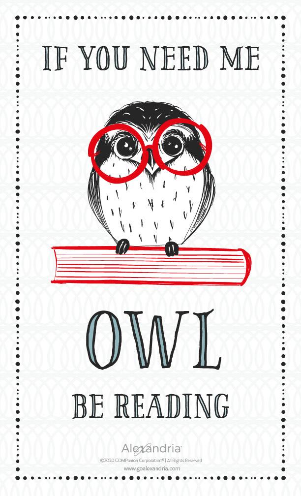 Owl-RGB